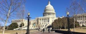 O que fazer em Washington DC – a capital deliciosa dos Estados Unidos