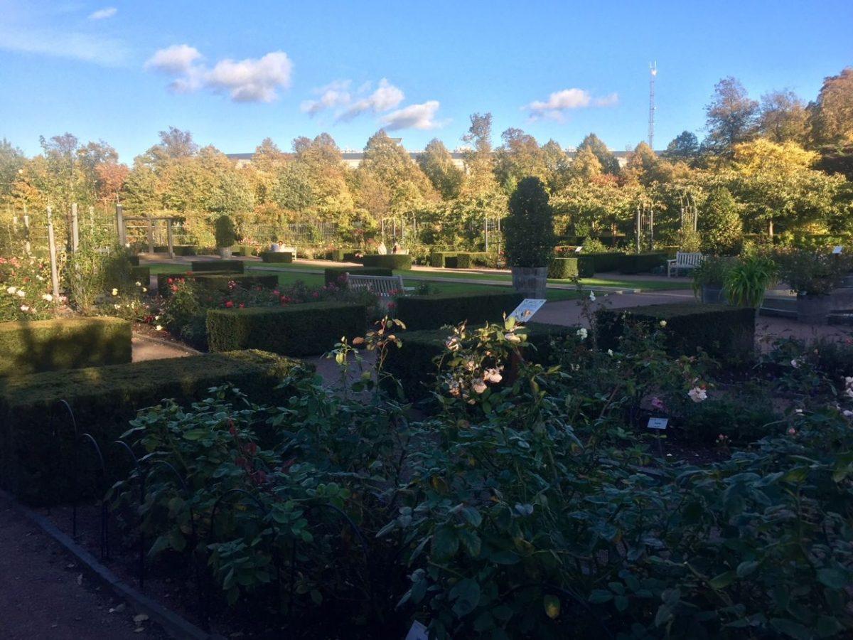 Gotemburgo garden society
