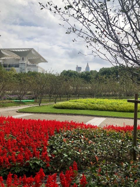 People's park o que fazer em Shangai
