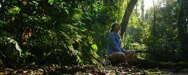 Mulher admirando a natureza no Parque das Aves, em Foz do Iguaçu