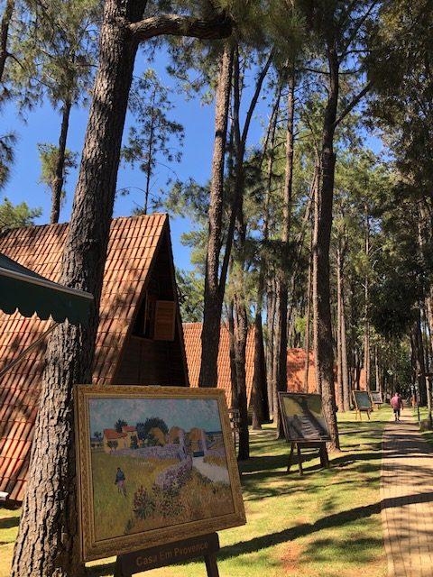 Parque Van Gogh em Holambra