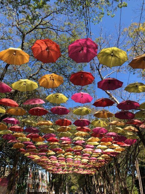 Sombrinhas coloridas de Holambra